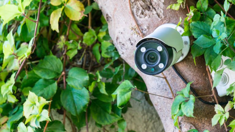 Кмет на силистренско село сложи камери, за да следи кой мърси селото