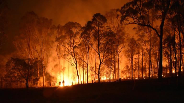 Голям пожар и в Хисарско